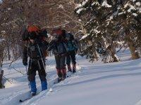 О лыжных походах