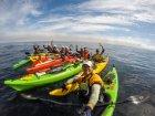 Завершился морской поход по островам Малой Курильской гряды